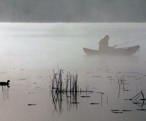 Komercinė žvejyba